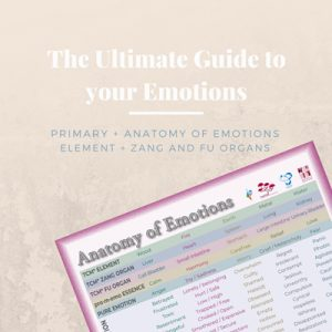 Identify all emotions via the primary emotion and therefore process your emotions with promemo essences